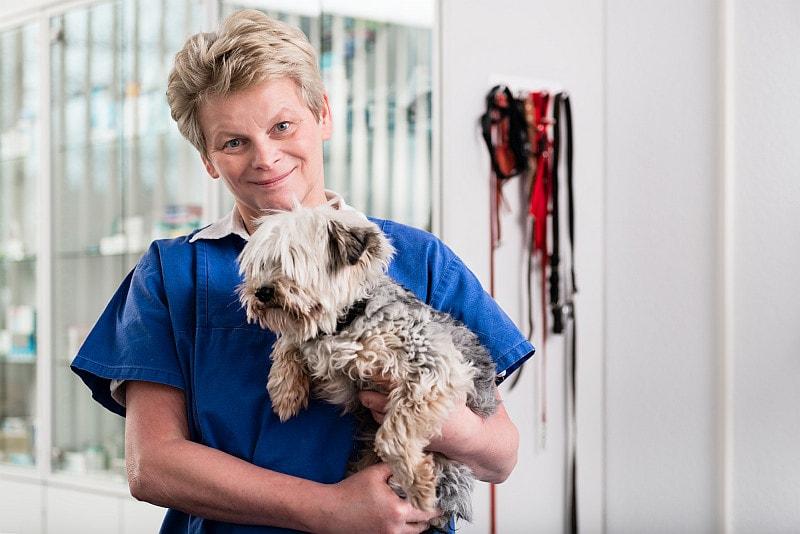 Veterinarian carrying puppy