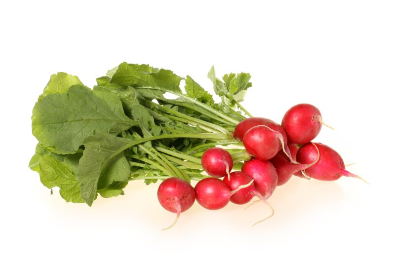 Nutritious Benefits of Radishes